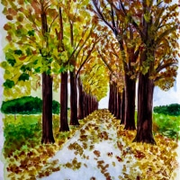510904 Herbstliche Allee * Autumn Alley